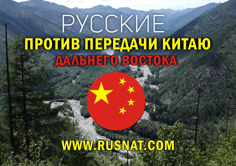 http://rusnsn.info/wp-content/uploads/2014/12/kittt.jpg