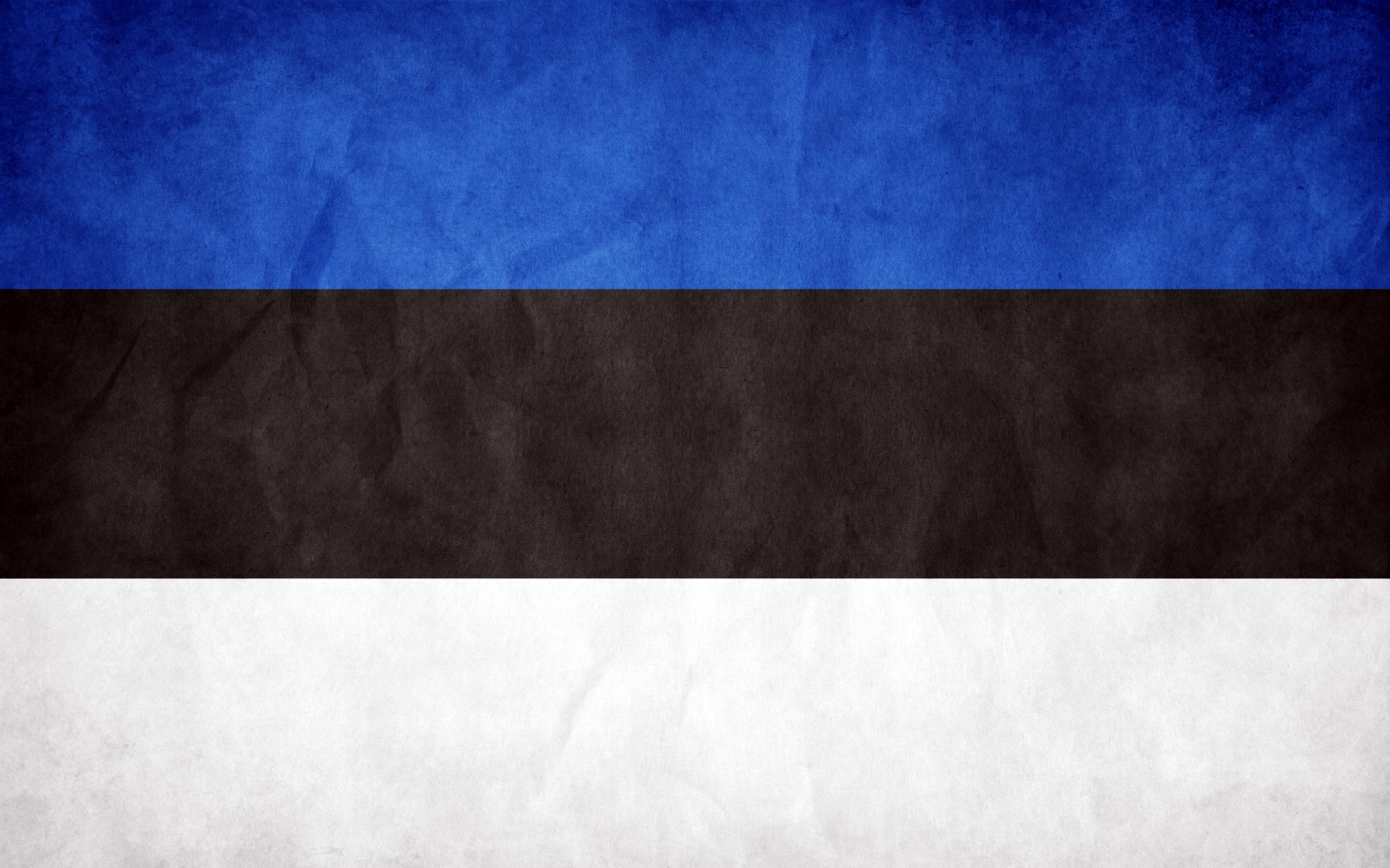 Estonia-Grunge-Flag