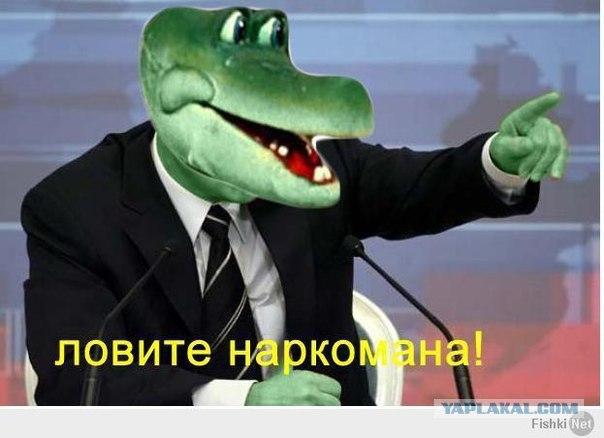xESogF7Ohuk