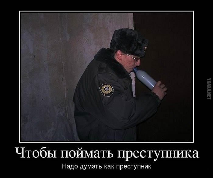 1435558646_0